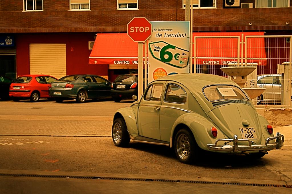 Valencia Beetle